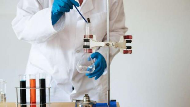 Pesquisadores estudam uso de fungos na construção civil
