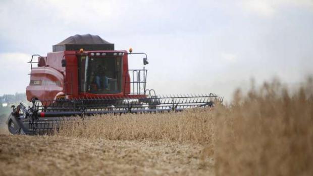 Paraná deve produzir 40,6 milhões de toneladas de grãos