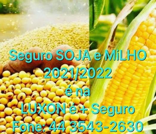 Previna – se: Contrate o seguro para safra de soja e milho 2021/2022 na Luxon é + Seguro